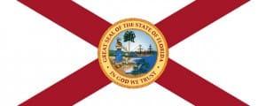 NRA Florida's Marion Hammer Interview on Gun Bills