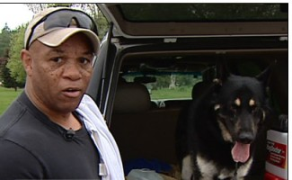 Man Attacked by Pit Bulls Defends Himself With Concealed Handgun