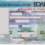 Idaho Concealed Weapons License