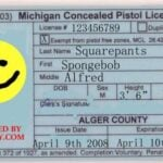 Michigan Concealed Carry Permit
