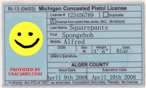 Michigan Concealed Carry Permit Information
