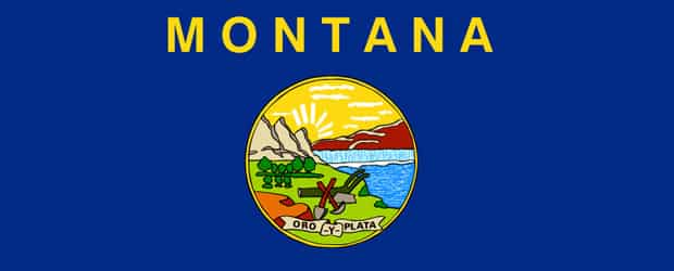 Montana Tea Party Group Plans to Sue Helena Over Gun Ordinance