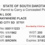 South Dakota Concealed Carry Permit Front
