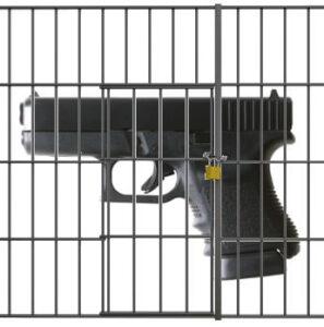 WI: Aldi Customer Who Shot Robbery Suspect Sues to get Gun Back