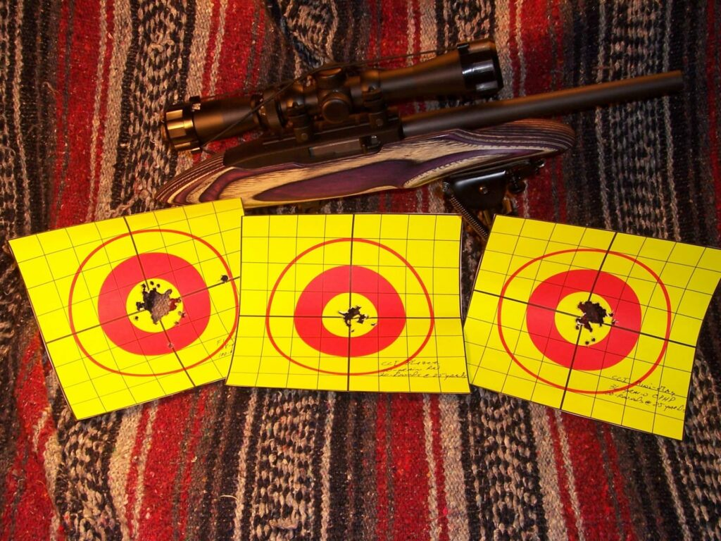 Ruger Charger 22 Test Results