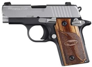 Sig 938- 9mm