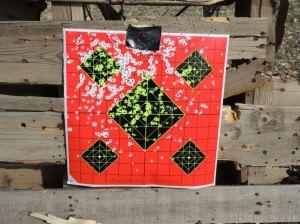 Stoeger Shotgun Target