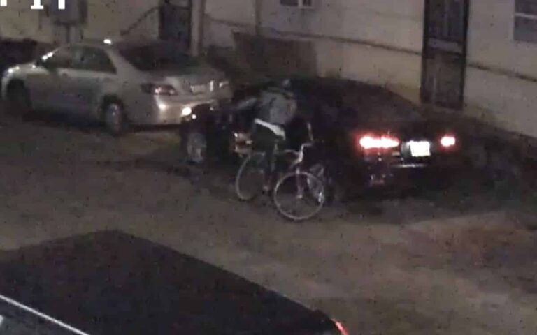 AR-15 and 500 Rounds Stolen from Car in New Orleans