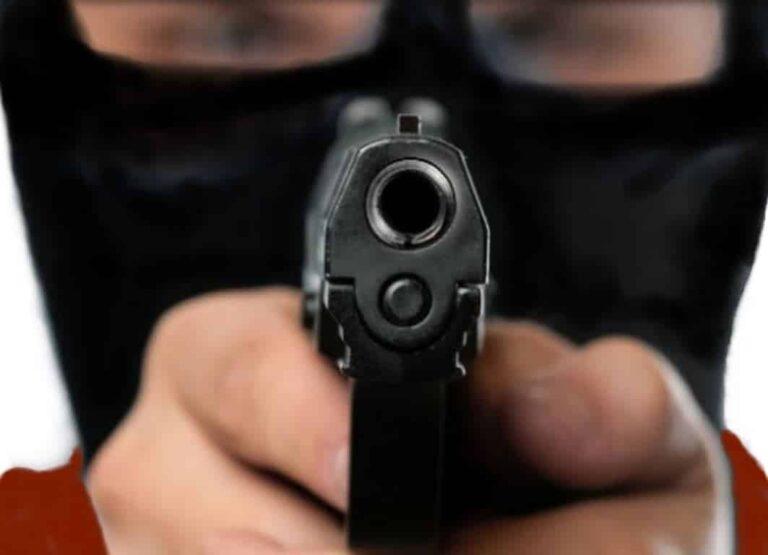 The Criminal Mind: Understanding and Dealing with Violent Criminals