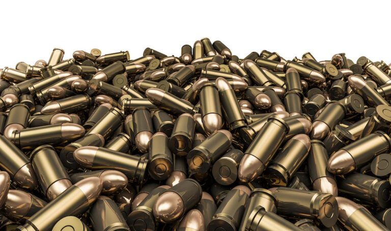 Roles for Different Calibers: Some Thoughts on Diversity