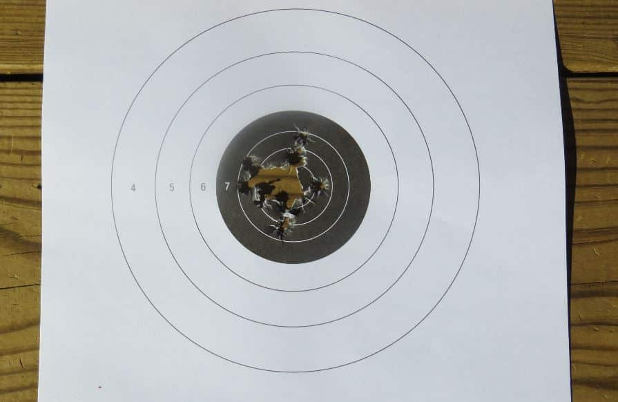 5-Sig 320 COMPACT-Target Hits-7 Yards
