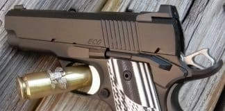 Dan Wesson Eco 1911 Review