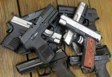 Gun Ownership, Violence, Mental Health & Inherited Traits