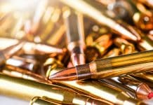 Ammo Background Check Injunction Stayed by 9th Circuit