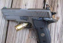 Sig Sauer P229 Legion Compact SAO Review