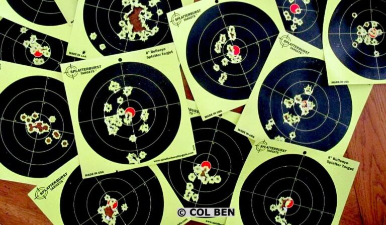 Sight Picture Holds and Concealed Carry Factors
