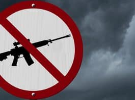 I-1639 Is What Happens When Idiots Write Gun Control Laws