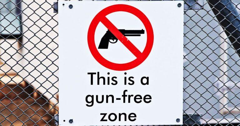 Dad Pulls CCW in Gun-Free Mall After Gunfire Erupts