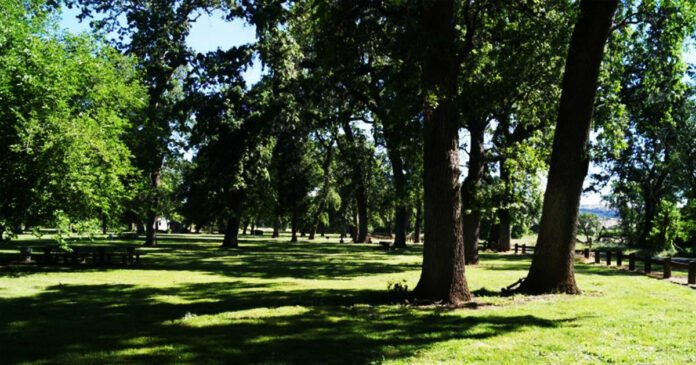 Supervisors Considering Allowing Concealed Carry in Tehama County Parks