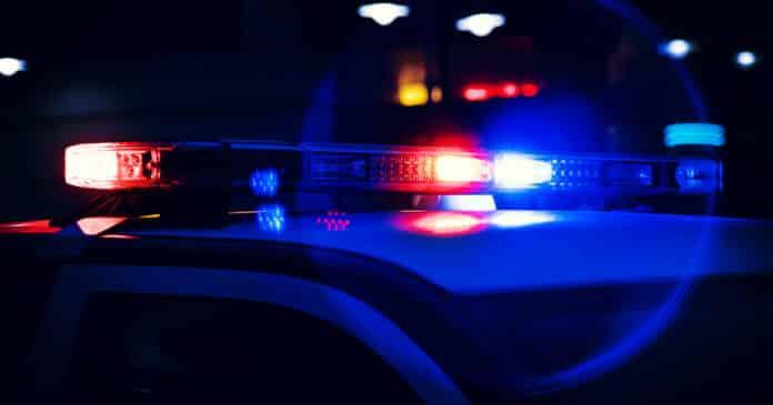 Woman Holds Burglar at Gunpoint After Firing a Warning Shot