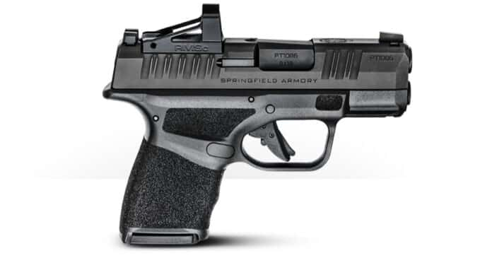 The Hellcat from Springfield Armory | 11+1