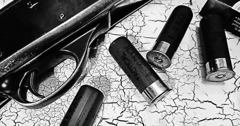 The King of Defensive 00 Buckshot: Federal's 8 Pellet FLITECONTROL