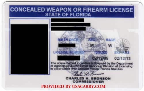 Florida Concealed Weapon License